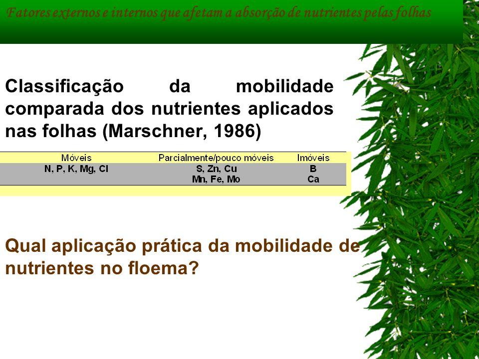 Qual aplicação prática da mobilidade de nutrientes no floema