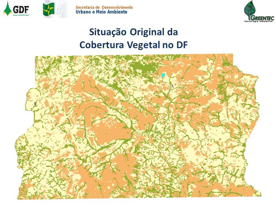Situação Original da Cobertura Vegetal no DF