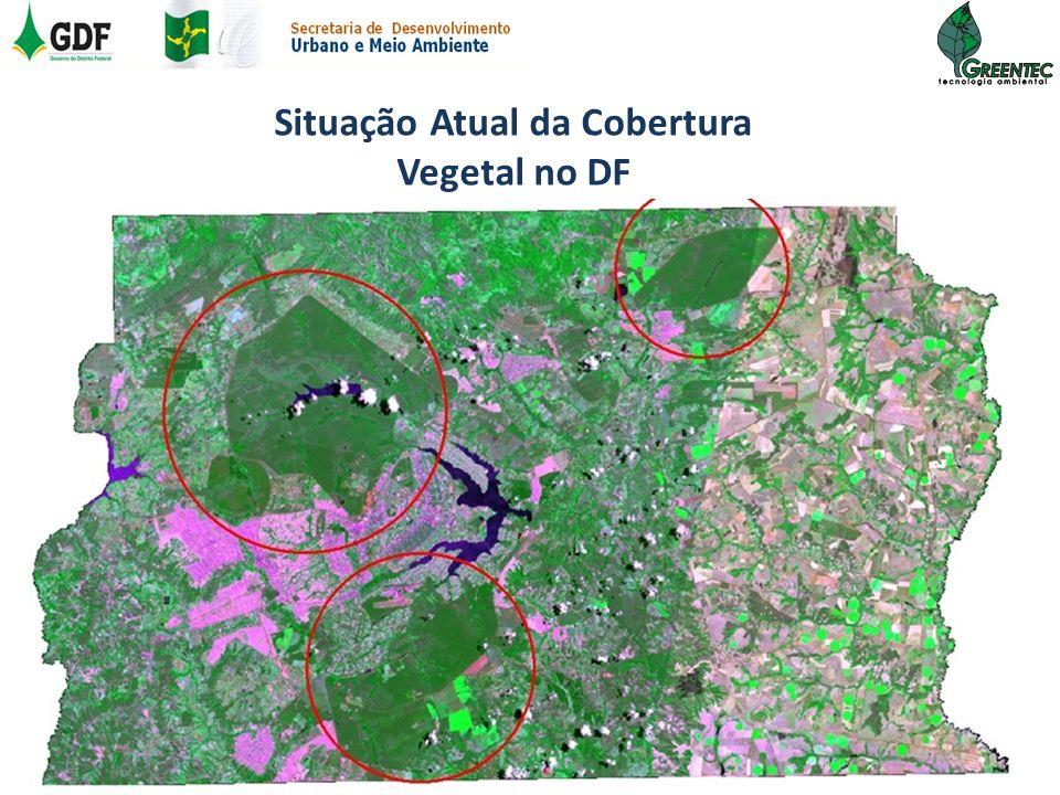 Situação Atual da Cobertura Vegetal no DF