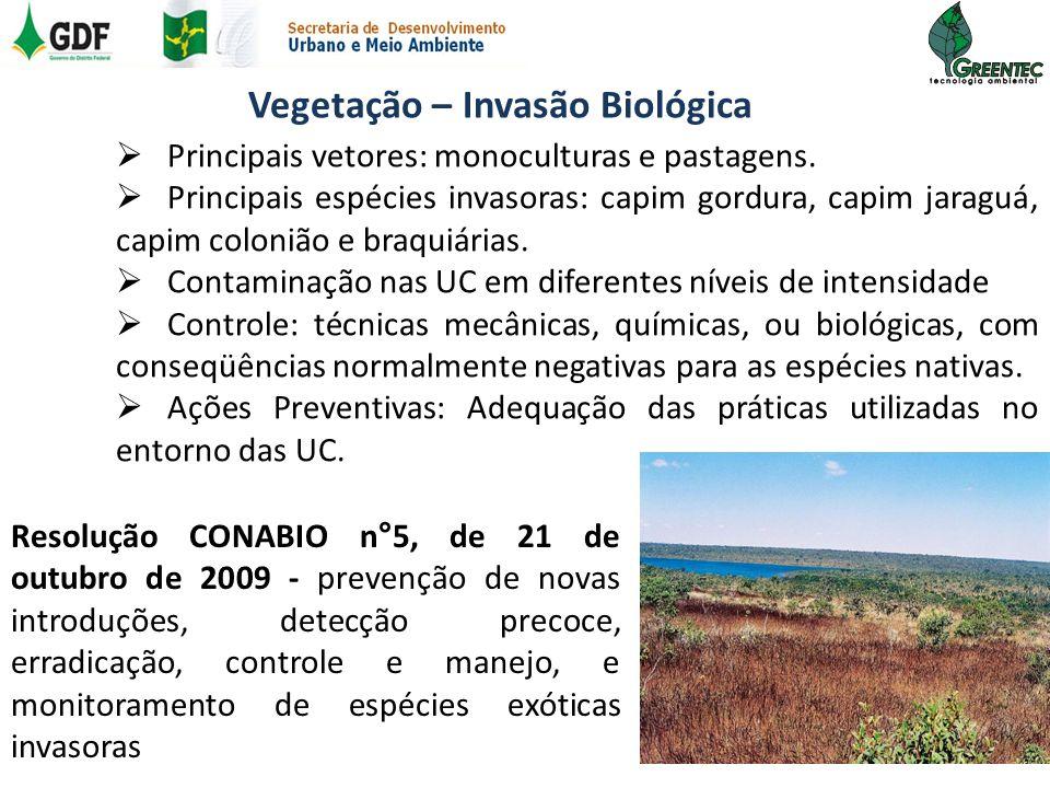 Vegetação – Invasão Biológica