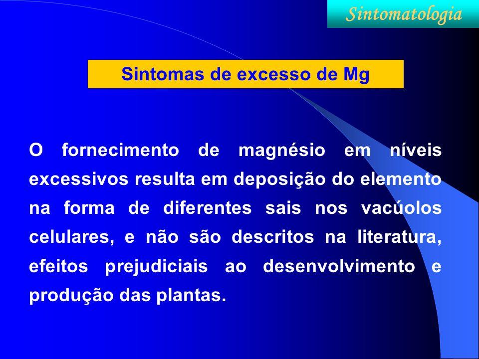 Sintomas de excesso de Mg