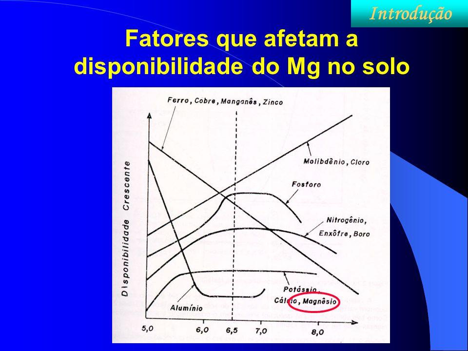 Fatores que afetam a disponibilidade do Mg no solo
