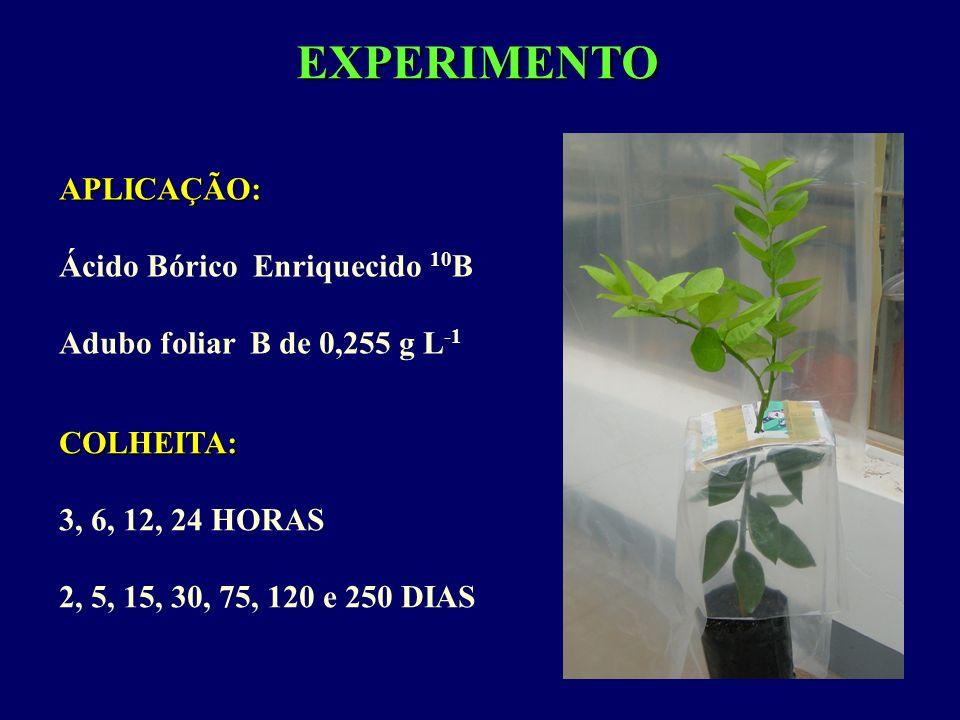 EXPERIMENTO APLICAÇÃO: Ácido Bórico Enriquecido 10B
