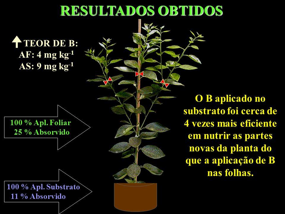 RESULTADOS OBTIDOS TEOR DE B: AF: 4 mg kg-1. AS: 9 mg kg-1.