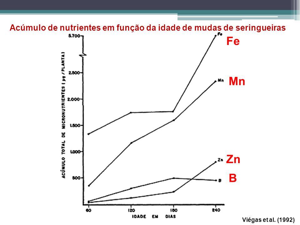 Acúmulo de nutrientes em função da idade de mudas de seringueiras