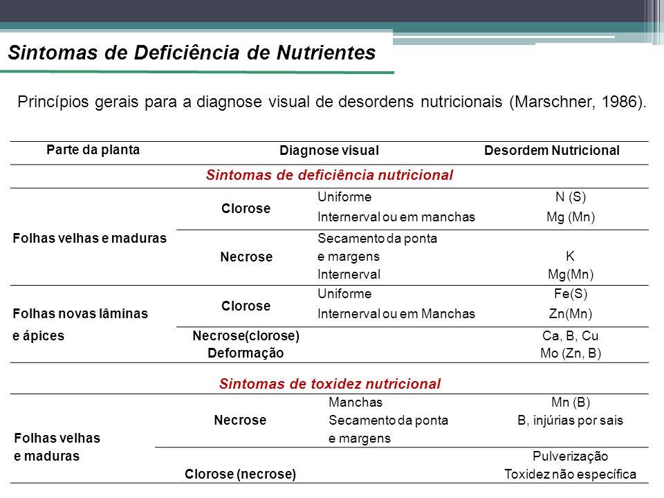 Sintomas de deficiência nutricional Sintomas de toxidez nutricional