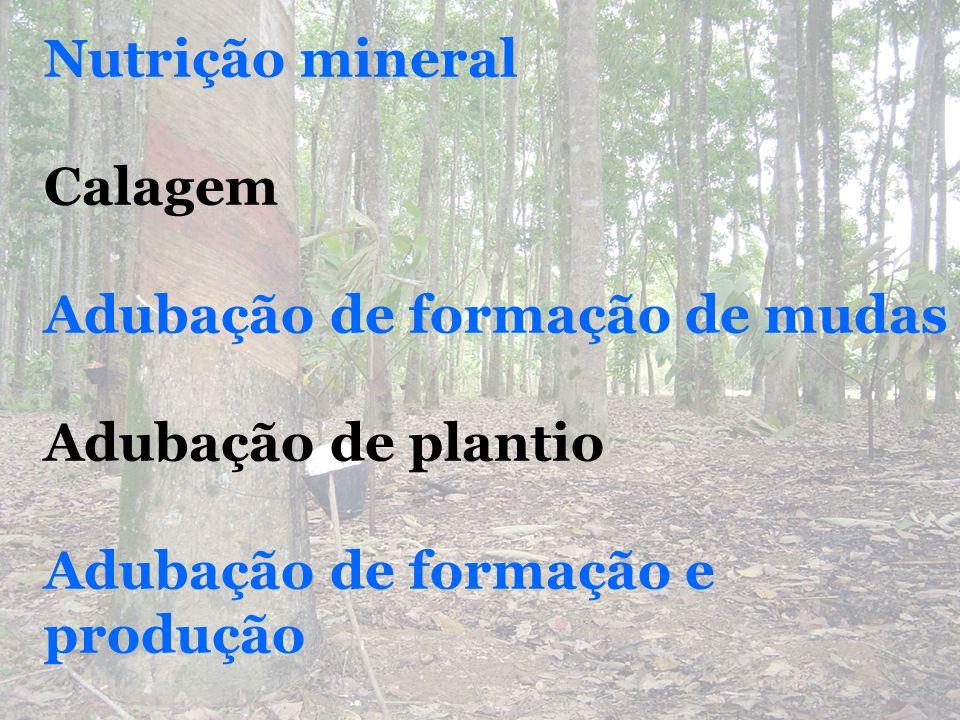 Nutrição mineral Calagem. Adubação de formação de mudas.