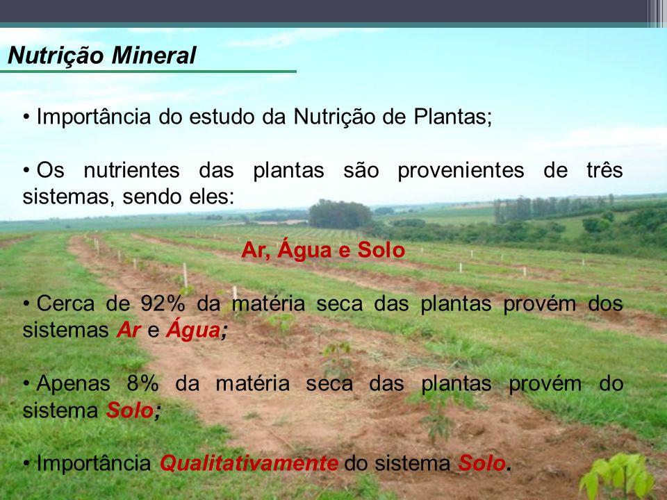 Nutrição Mineral Importância do estudo da Nutrição de Plantas;