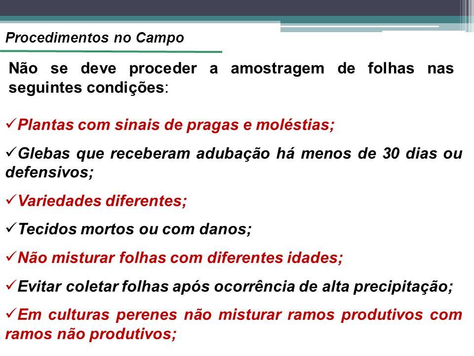 Não se deve proceder a amostragem de folhas nas seguintes condições: