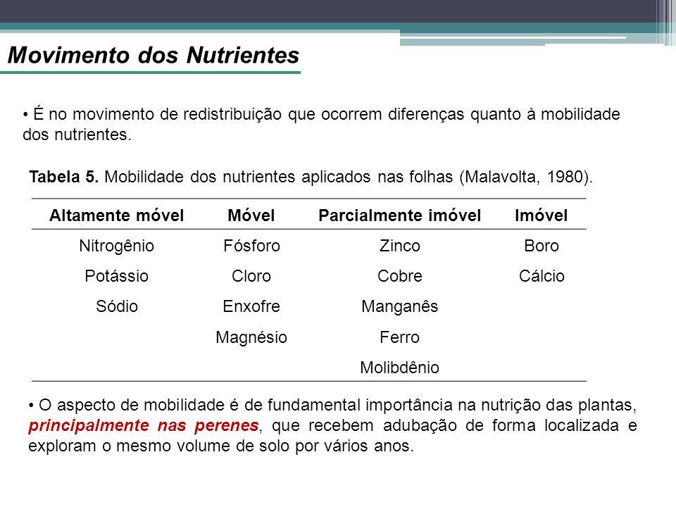 Movimento dos Nutrientes