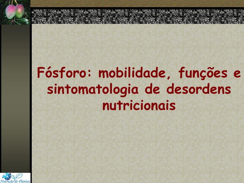 Fósforo: mobilidade, funções e sintomatologia de desordens nutricionais