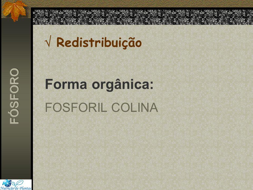  Redistribuição Forma orgânica: FOSFORIL COLINA FÓSFORO