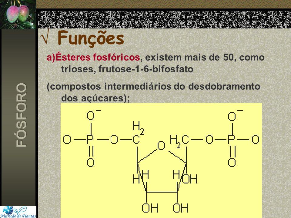 Funções a)Ésteres fosfóricos, existem mais de 50, como trioses, frutose-1-6-bifosfato. (compostos intermediários do desdobramento dos açúcares);