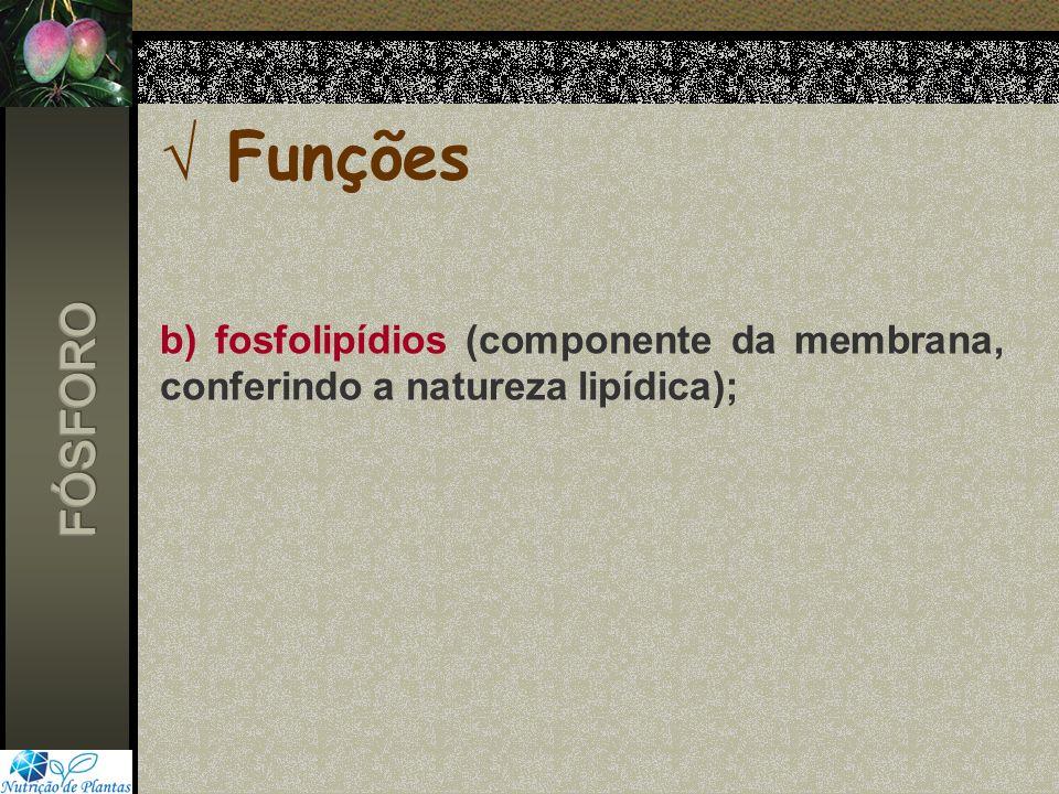 Funções b) fosfolipídios (componente da membrana, conferindo a natureza lipídica); FÓSFORO
