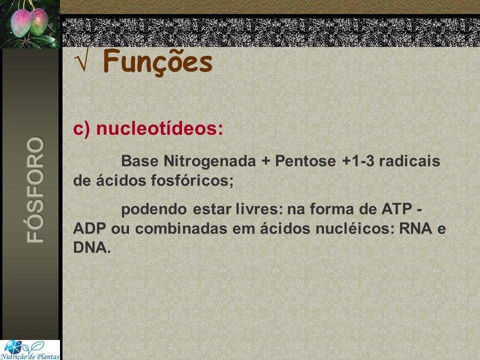Funções c) nucleotídeos: