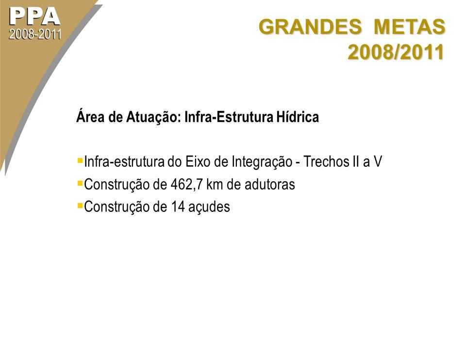 GRANDES METAS 2008/2011 Área de Atuação: Infra-Estrutura Hídrica