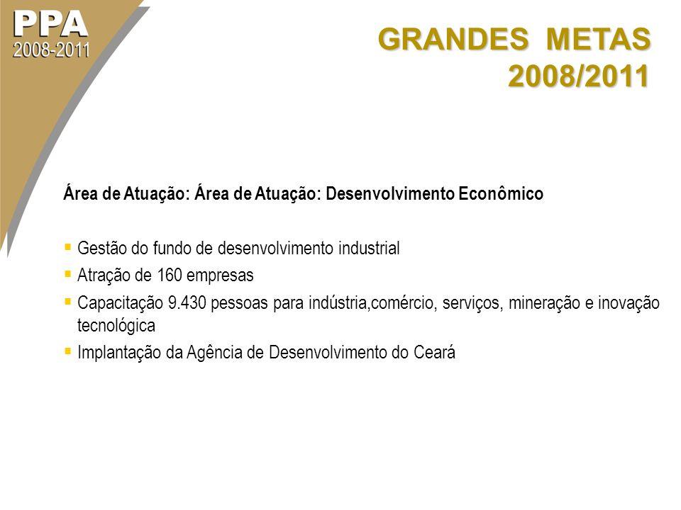 GRANDES METAS 2008/2011 Área de Atuação: Área de Atuação: Desenvolvimento Econômico. Gestão do fundo de desenvolvimento industrial.
