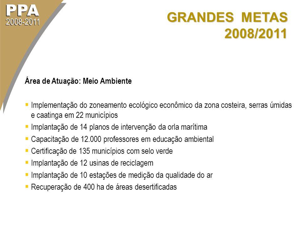 GRANDES METAS 2008/2011 Área de Atuação: Meio Ambiente