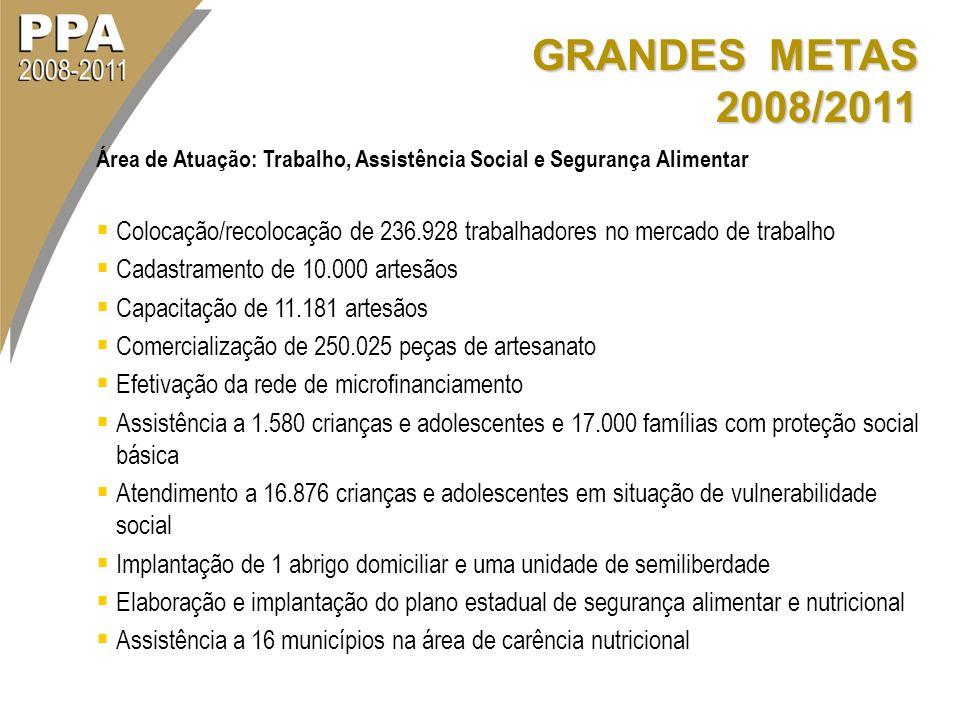 GRANDES METAS 2008/2011 Área de Atuação: Trabalho, Assistência Social e Segurança Alimentar.