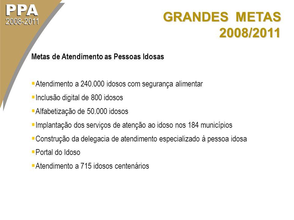 GRANDES METAS 2008/2011 Metas de Atendimento as Pessoas Idosas