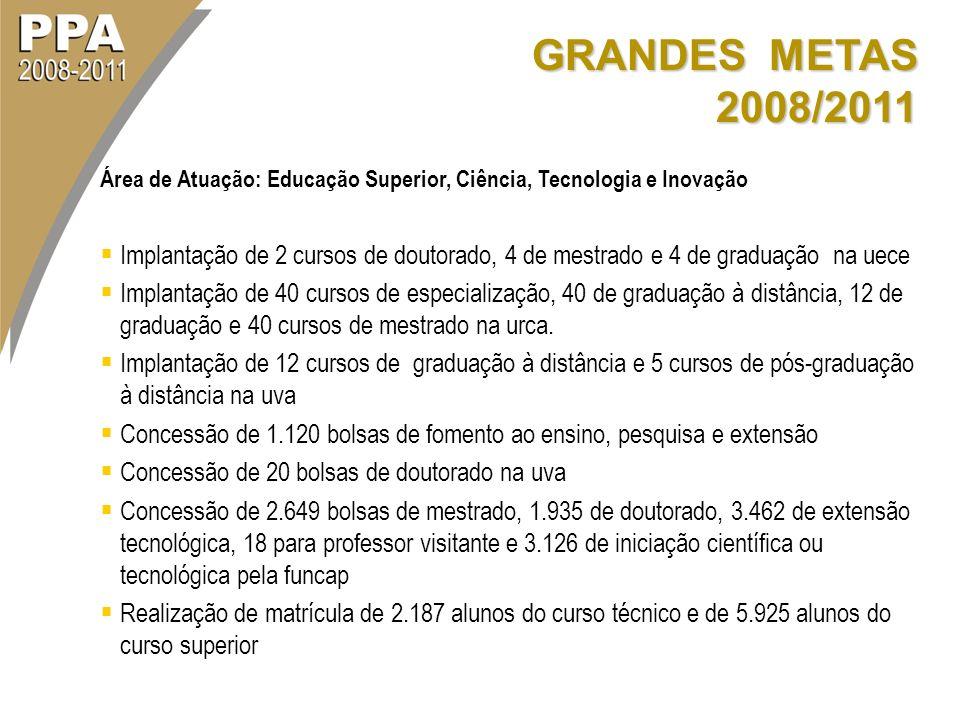 GRANDES METAS 2008/2011 Área de Atuação: Educação Superior, Ciência, Tecnologia e Inovação.