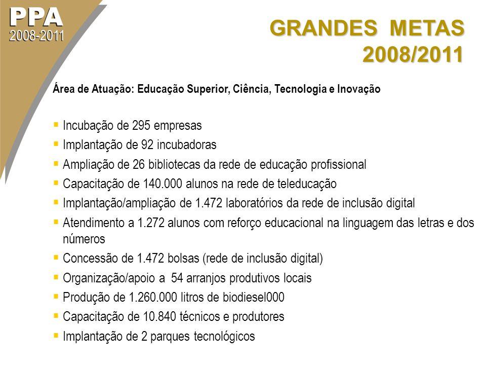 GRANDES METAS 2008/2011 Incubação de 295 empresas