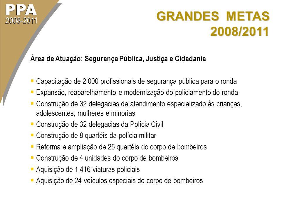 GRANDES METAS 2008/2011 Área de Atuação: Segurança Pública, Justiça e Cidadania.