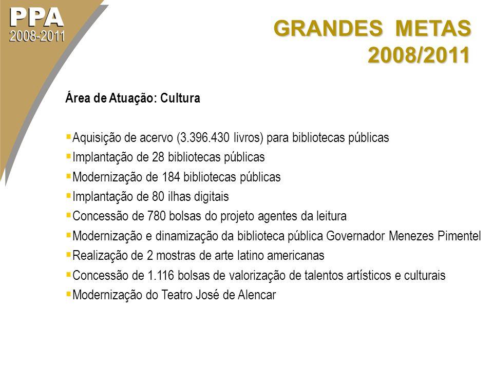 GRANDES METAS 2008/2011 Área de Atuação: Cultura