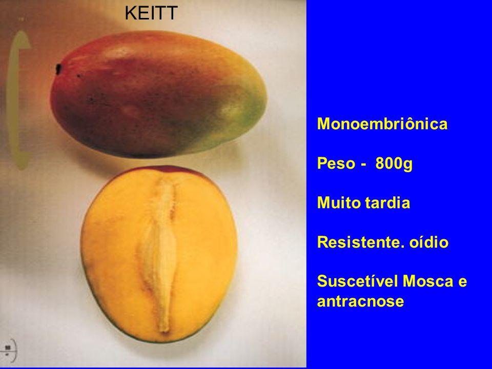 KEITT Monoembriônica Peso - 800g Muito tardia Resistente. oídio