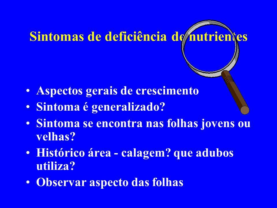 Sintomas de deficiência de nutrientes