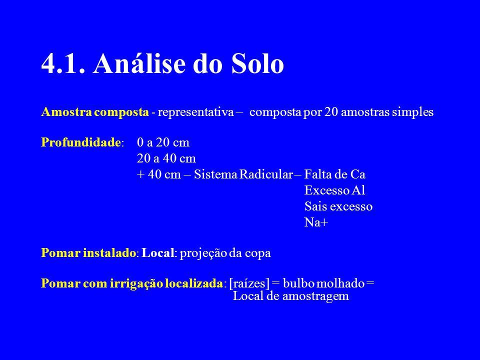 4.1. Análise do Solo Amostra composta - representativa – composta por 20 amostras simples. Profundidade: 0 a 20 cm.