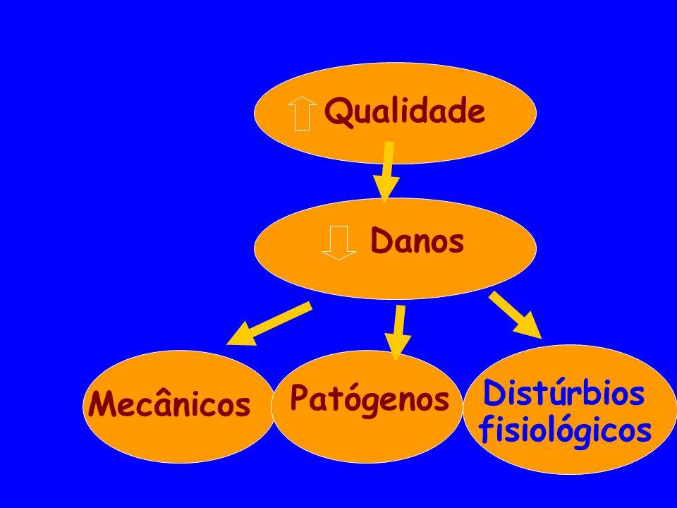 Qualidade Danos Distúrbios fisiológicos Patógenos Mecânicos