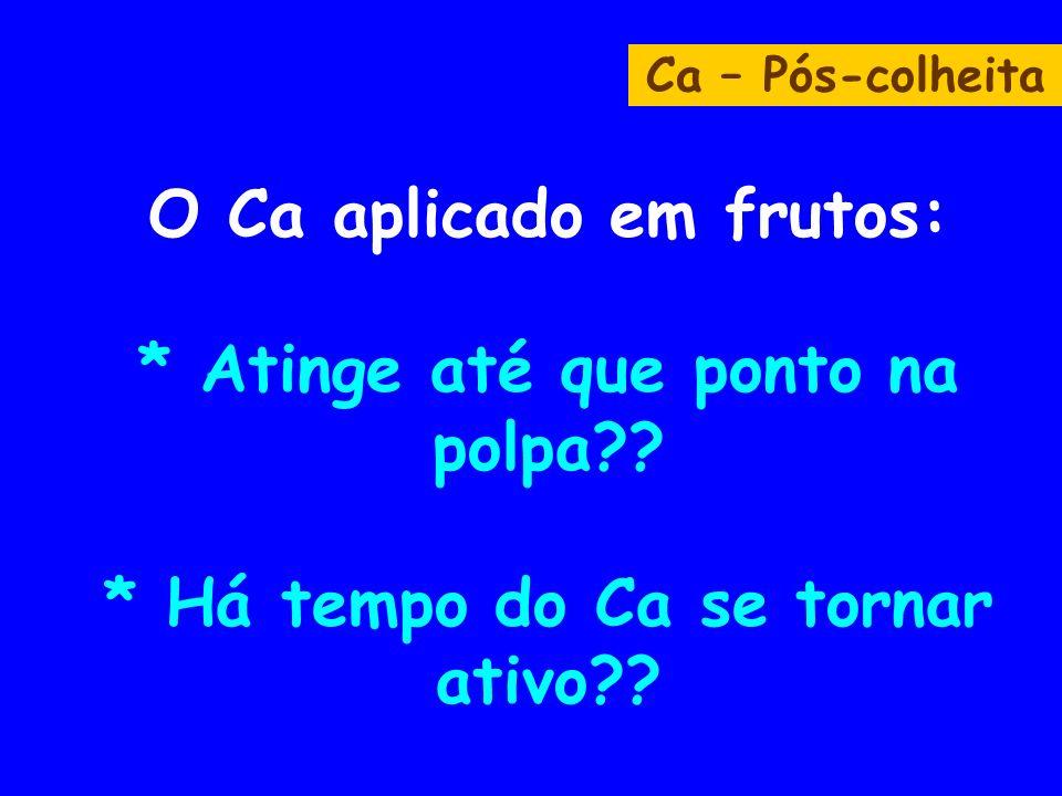 Ca – Pós-colheita O Ca aplicado em frutos: * Atinge até que ponto na polpa .
