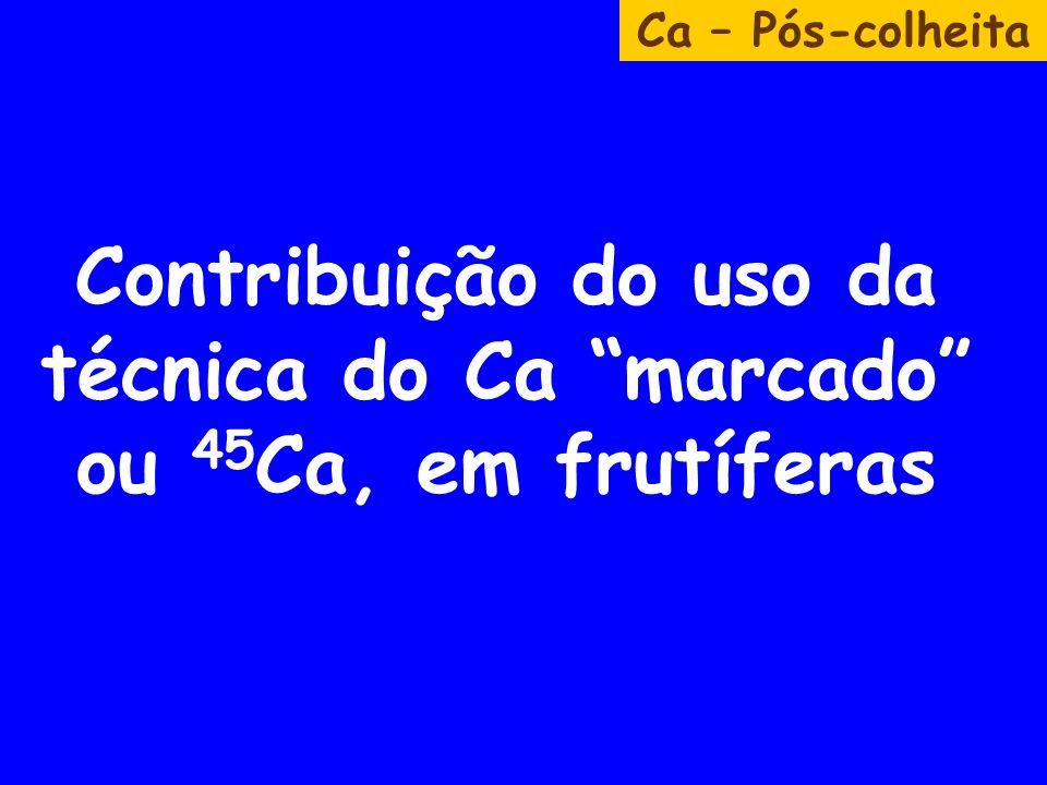 Contribuição do uso da técnica do Ca marcado ou 45Ca, em frutíferas