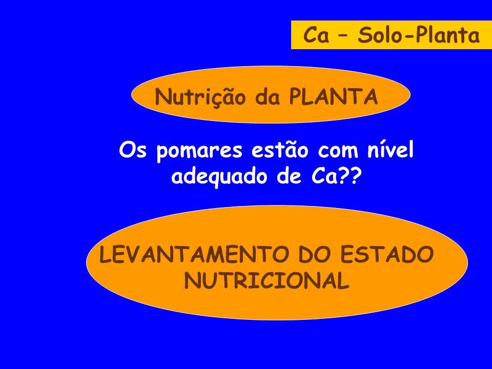 Ca – Solo-Planta Nutrição da PLANTA Os pomares estão com nível adequado de Ca .
