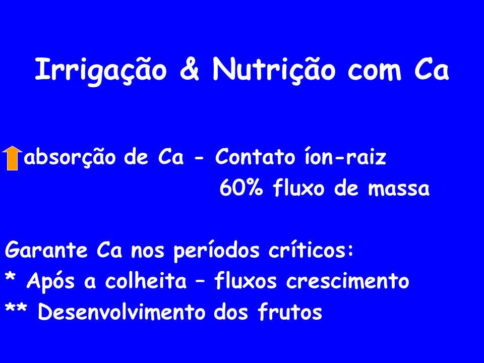 Irrigação & Nutrição com Ca