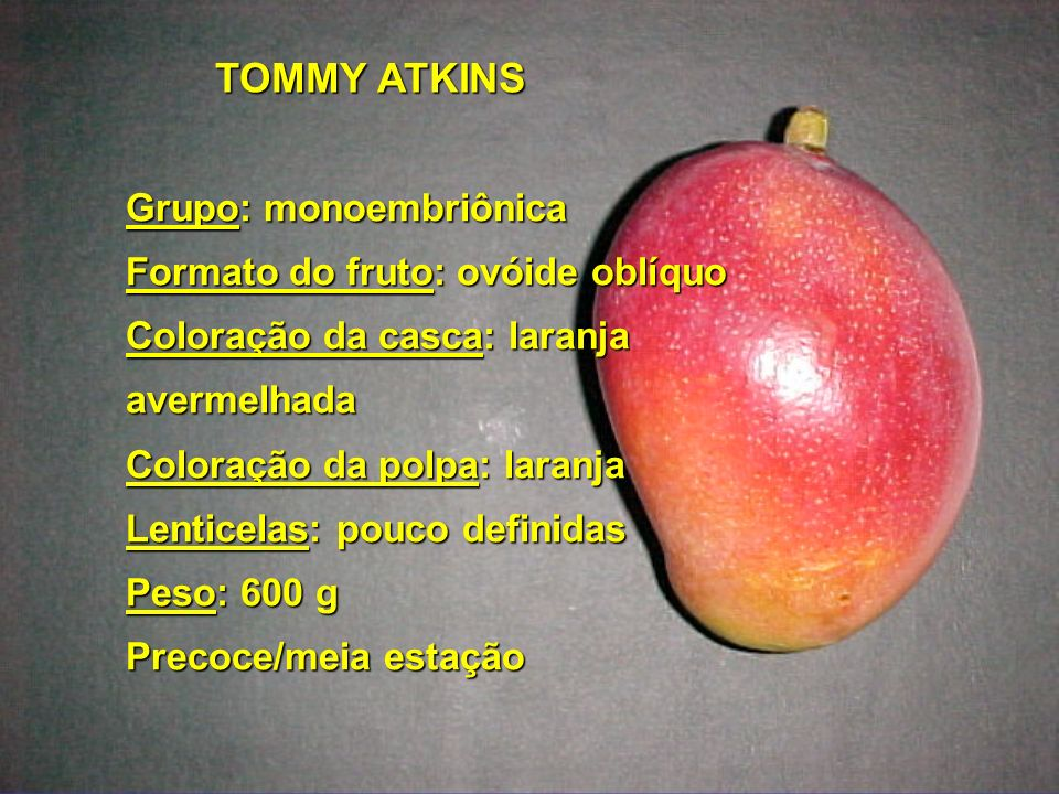 TOMMY ATKINS Grupo: monoembriônica Formato do fruto: ovóide oblíquo