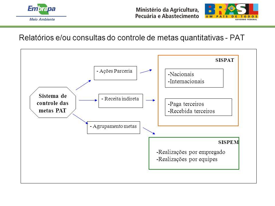 Relatórios e/ou consultas do controle de metas quantitativas - PAT