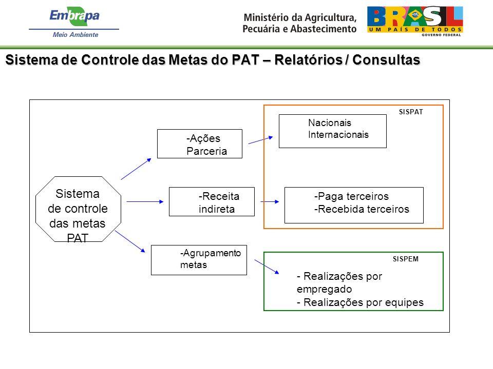 Sistema de Controle das Metas do PAT – Relatórios / Consultas