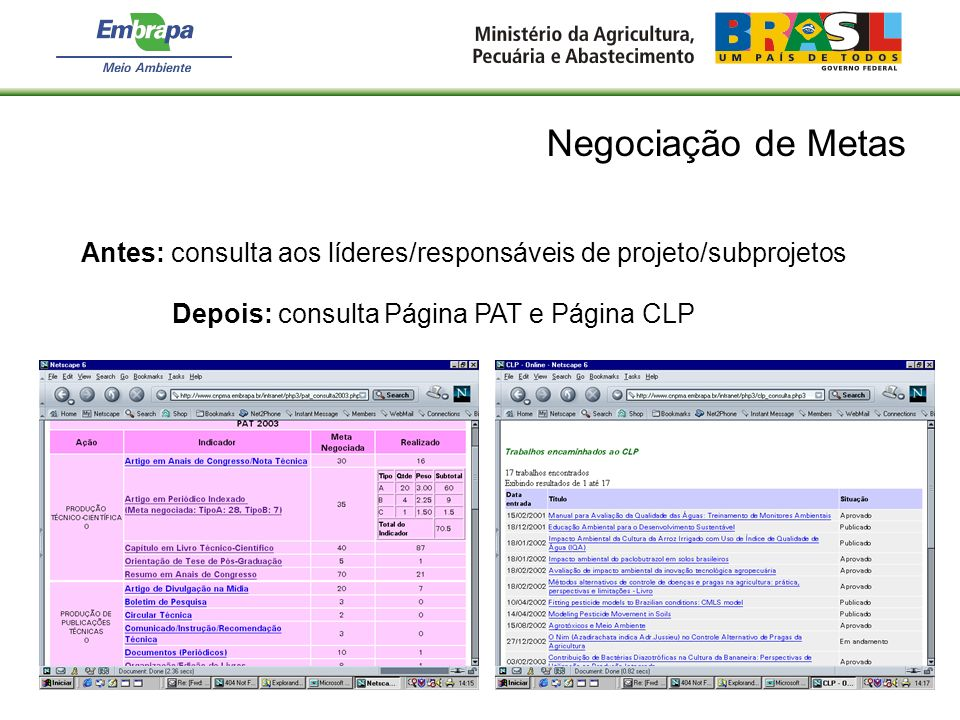Negociação de Metas Antes: consulta aos líderes/responsáveis de projeto/subprojetos.