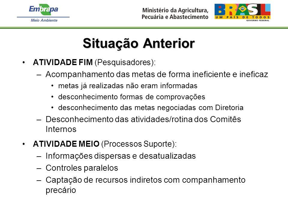 Situação Anterior ATIVIDADE FIM (Pesquisadores): Acompanhamento das metas de forma ineficiente e ineficaz.