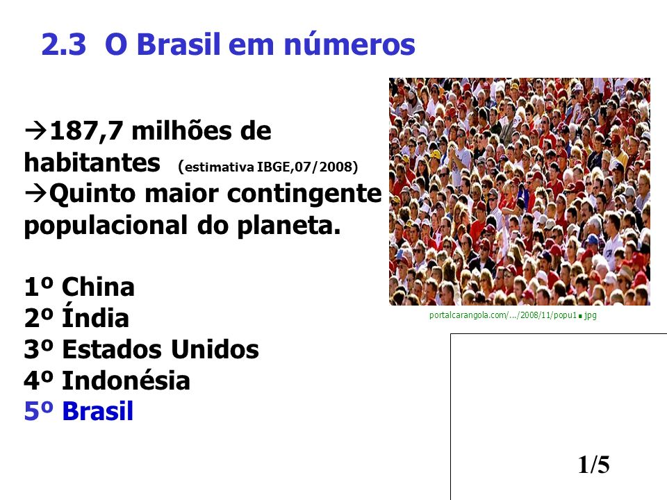 2.3 O Brasil em números 187,7 milhões de habitantes (estimativa IBGE,07/2008) Quinto maior contingente populacional do planeta.