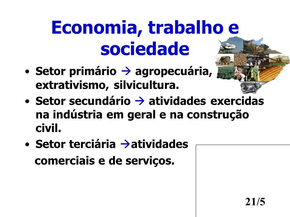 Economia, trabalho e sociedade