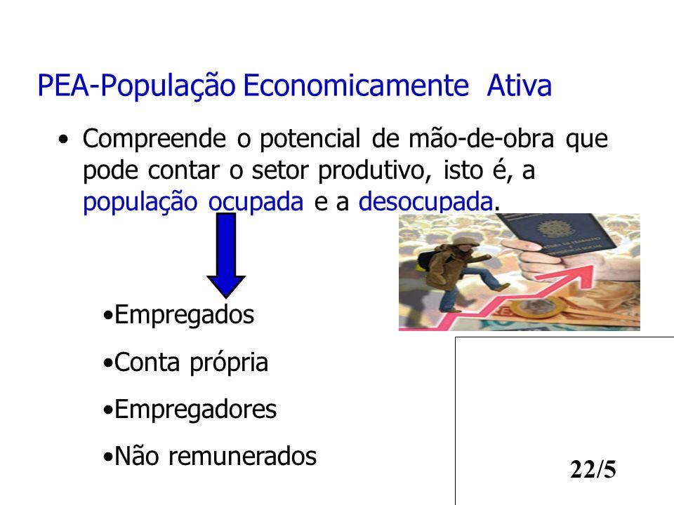 PEA-População Economicamente Ativa