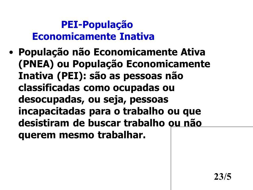PEI-População Economicamente Inativa