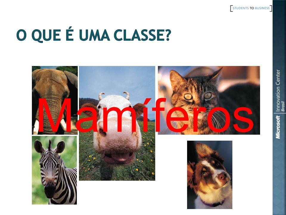 Mamíferos O que é uma classe