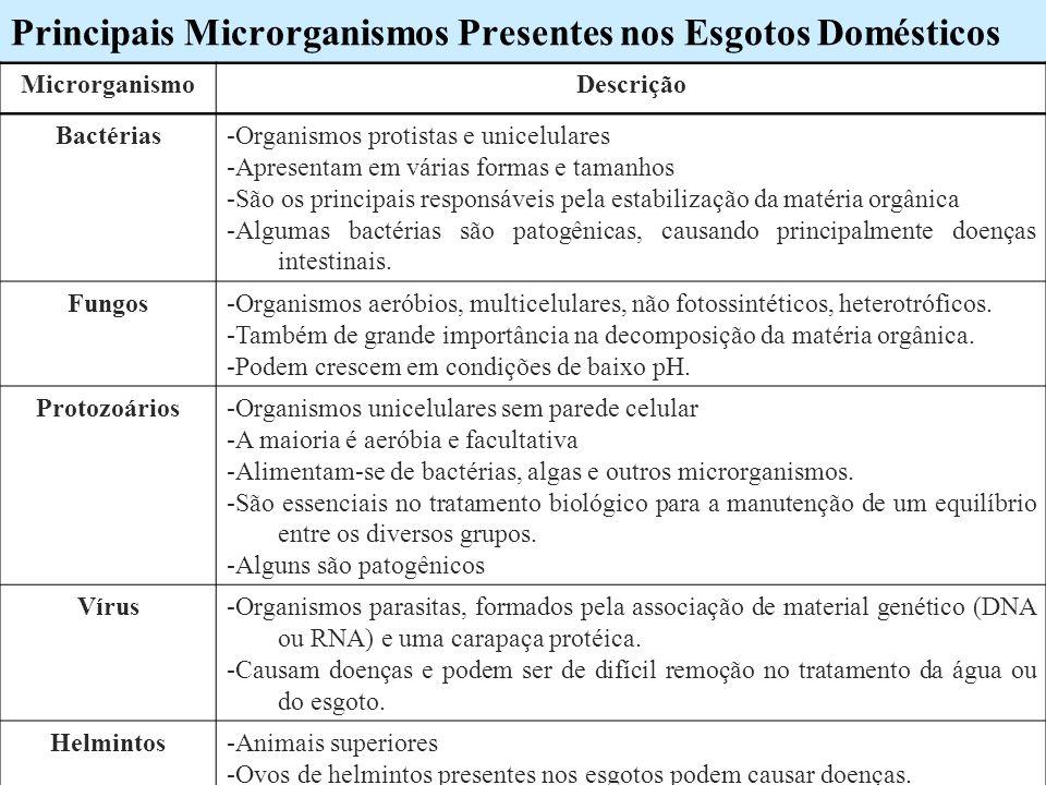 Principais Microrganismos Presentes nos Esgotos Domésticos