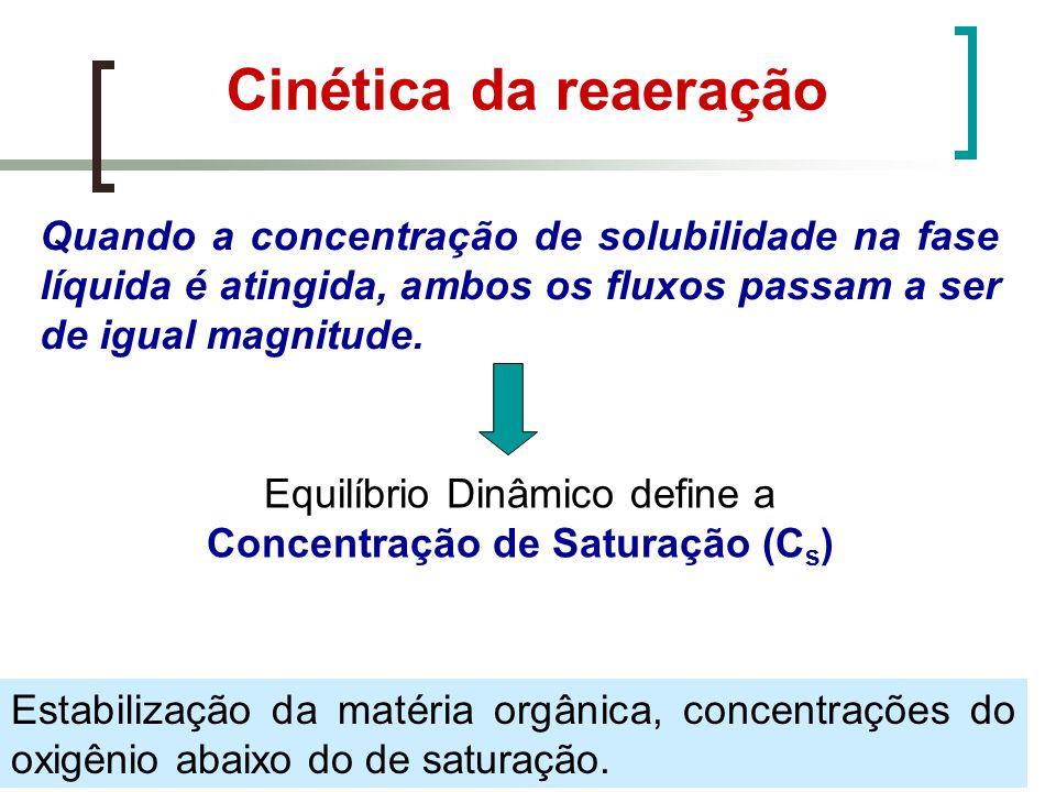 Equilíbrio Dinâmico define a Concentração de Saturação (Cs)