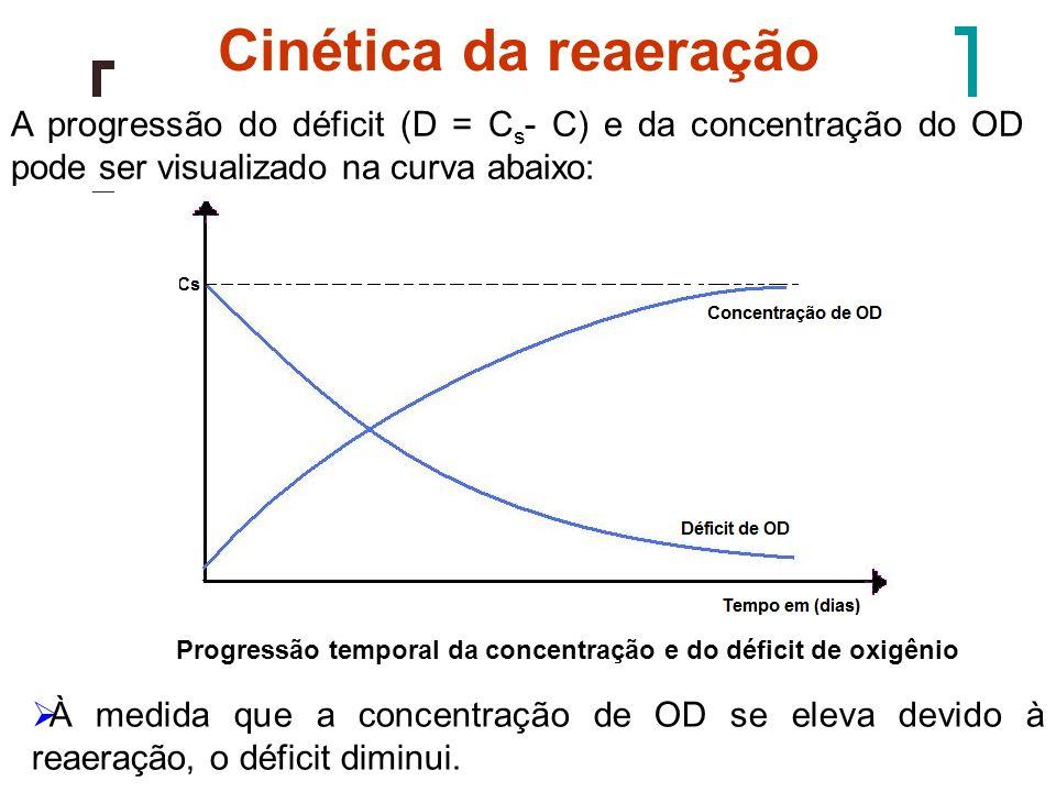 Progressão temporal da concentração e do déficit de oxigênio