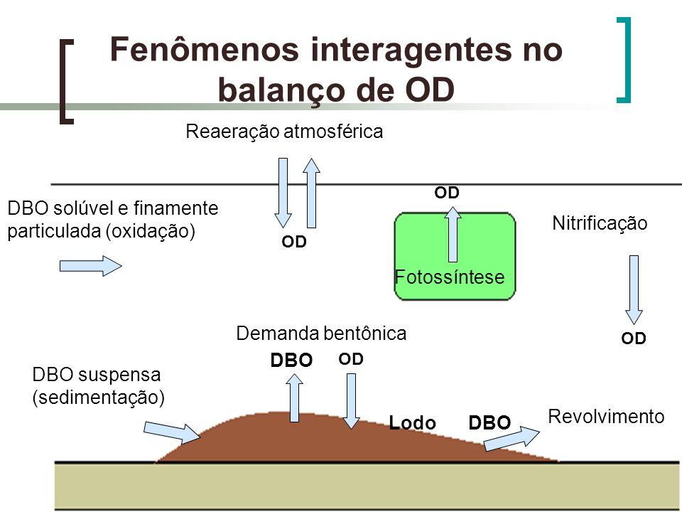 Fenômenos interagentes no balanço de OD